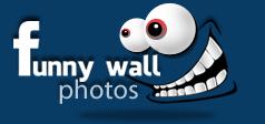 Funny Wall Photos - Funny Photos