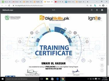 Freelaner Training Certificate
