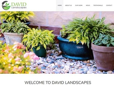 davidlandscapes.com