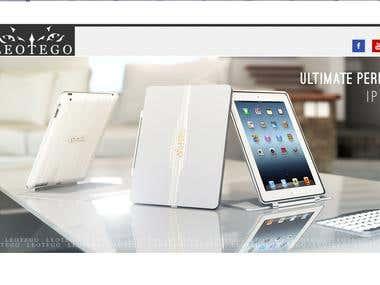 new website for leotego