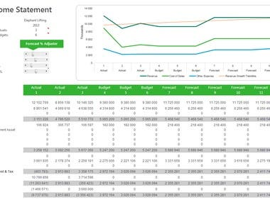 Financial Planning, Budgeting, Forecasting and Variances