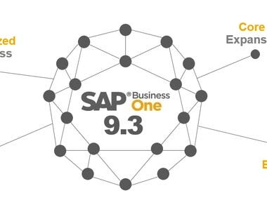 SAP Business one, ERP accounting, Virtual assistant