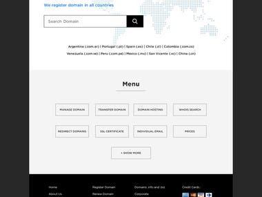 UI / UX of Domain Website