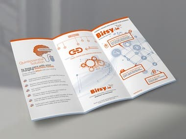 Bitsy Brochure