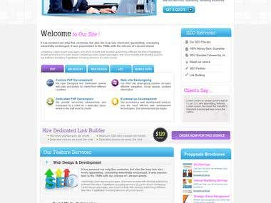 SEO Website Designed