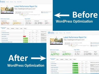 I will perfectly optimize your WordPress Website