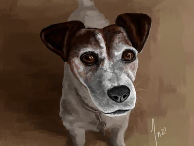 Animals/People/Miscellaneous Paintings (Impressionism style)