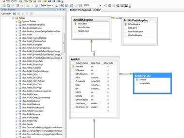 Development of Microsoft SQL database - ERP
