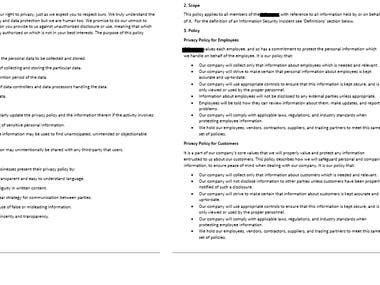 Policy Writing - Privacy Policy