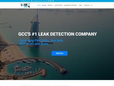 LeakPlus