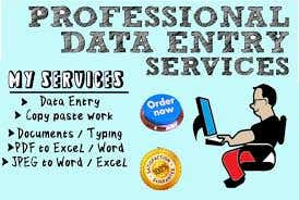Professional Data entry, PDF conversions & Data Scraping