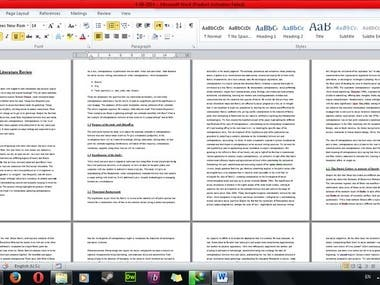 5000 words Literature Review