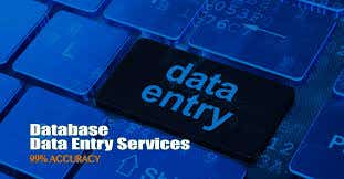 I will provide fast data entry services.