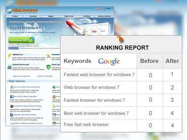 .www.slimbrowser.net
