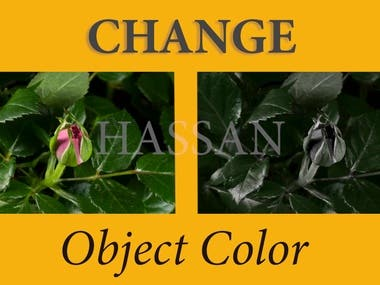 Changing color of the object
