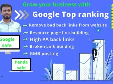 I will bring your business to the google top ranking