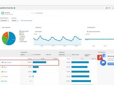 Organic Traffic with SEO (Google Analytics)