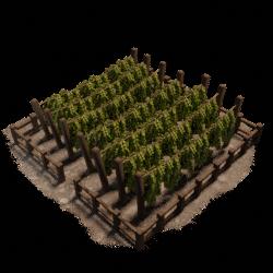 Hops Farm 3D Model - Low Poly