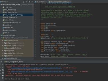 Python backend programming