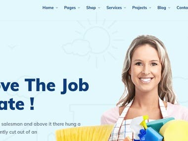 Magento Cleaning Website
