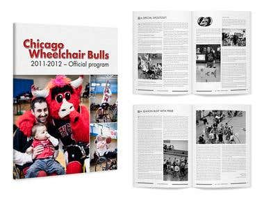 Chicago Wheelchair Bulls Brochure