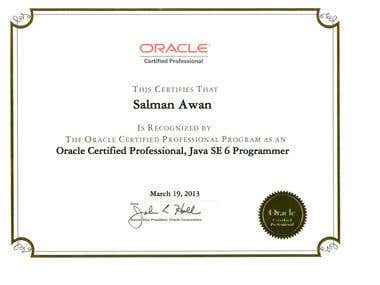 Certified Java SE 6 Programmer
