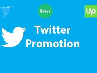 Twiter marketing