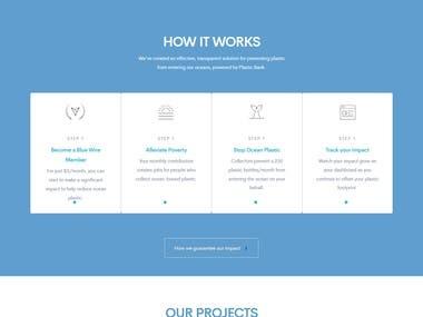Business Website Design Development