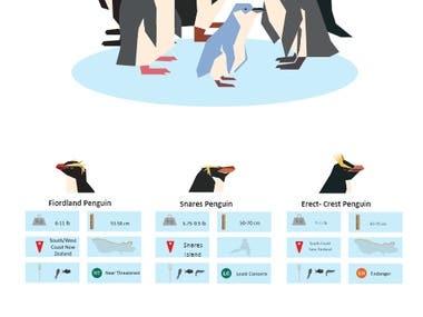 Penguins Inforgraph