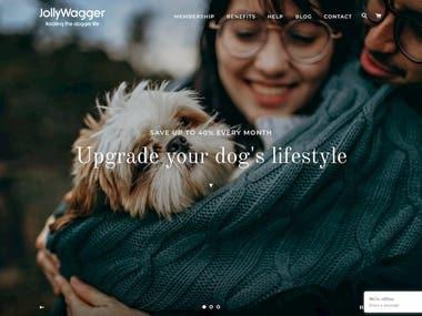 E-Commerce Website Design + Content + Blog
