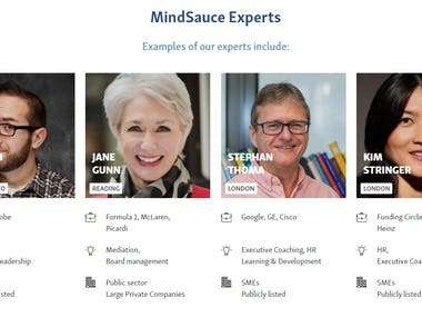 MindSauce- Online Business Consultancy