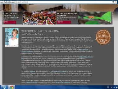 Website Translation Spanish --> English