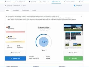 Website SEO Audits