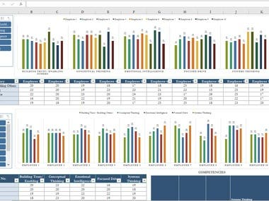 Excel Dashboard for leadership competencies