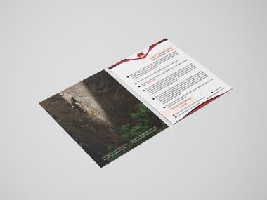 Business Flyer [Graphic Design]
