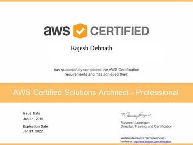 AWS System Solution Architect.