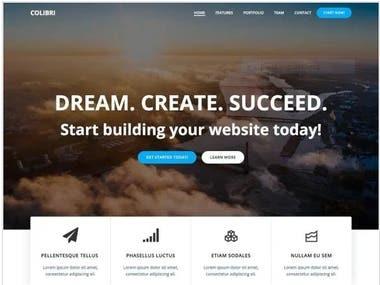 amazing website