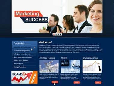 BCAMS - Wordpress Business Portfolio