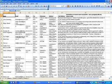 web research to excel spreedsheet