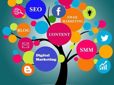 Professional Digital Marketer and SEO expert