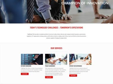 Telecoms Consulting Website