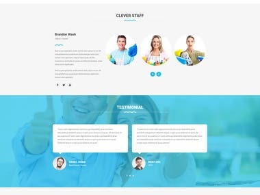 Cleaning Website (Wordpress)
