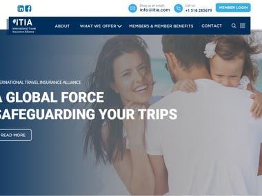 Insurance Fin-Tech Company
