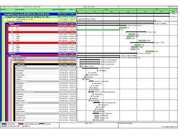 Primavera - Baseline scheduling and Timeline tracking