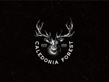Logo Design For Caledonia Forest