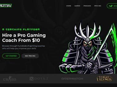 Gaming Platform Website Design.