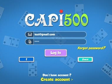 Capi500