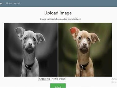 Image Colorization with web app