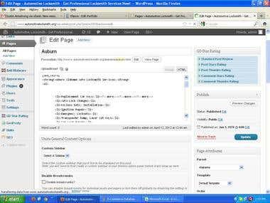 Data Entry Wordpress - On Page SEO