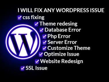 Fix Any WordPress